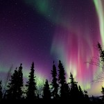 Beautiful red auroras over Fairbanks, AK